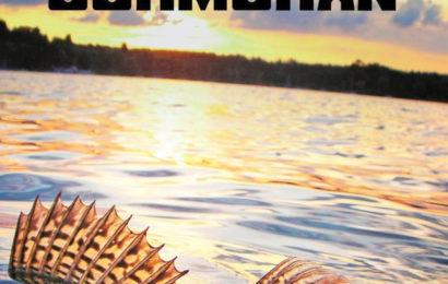 Katalog Cormoran 2019